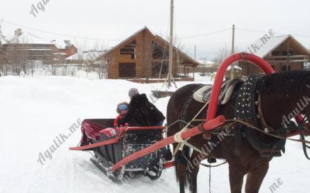 Катания на лошадях