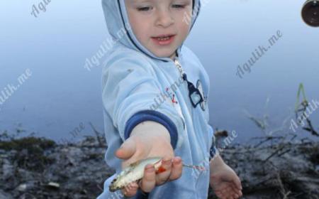 Отдых с рыбалкой и ребенком